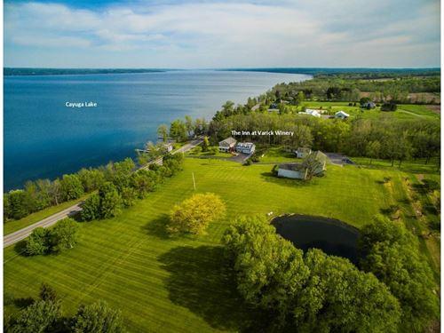 Winery Vineyard Near Ithaca, NY : Finger Lakes : Seneca County : New York