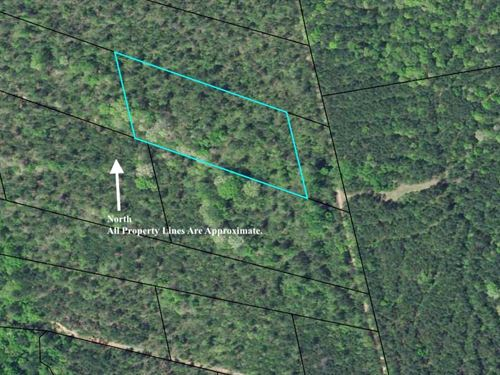 4 Acres Crawfordville, Ga : Crawfordville : Taliaferro County : Georgia