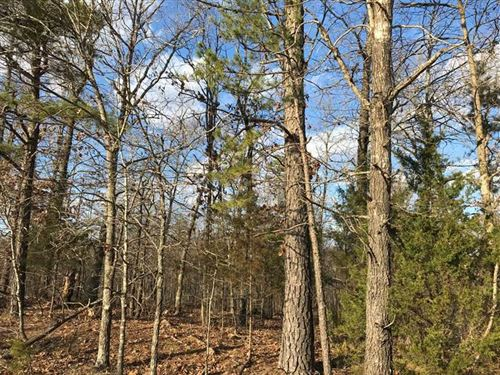 7 Acre Residential Lot For Sale in : Poplar Bluff : Butler County : Missouri