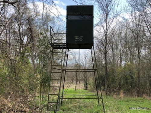 564 Ac, Deer & Duck Hunting WI : Clayton : Tensas Parish : Louisiana