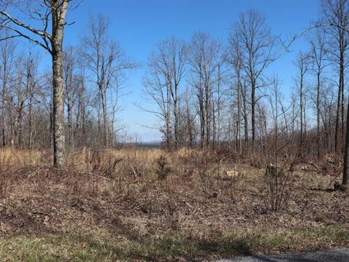 Swafford Rd Crossville TN Acreage : Crossville : Cumberland County : Tennessee