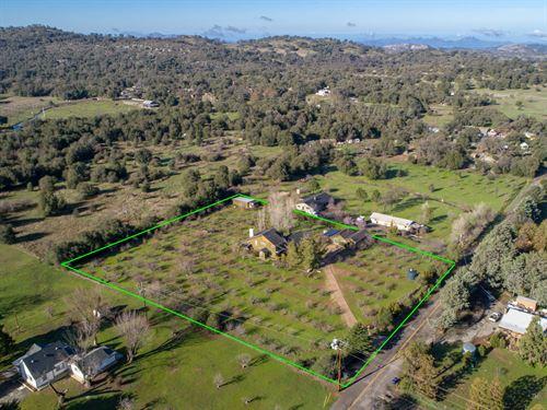 Wynola Home & Orchard : Julian : San Diego County : California
