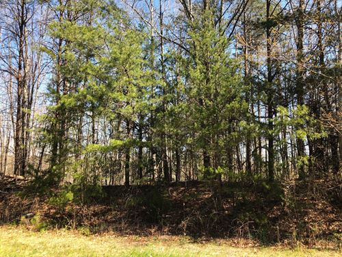 Large Lot For Sale in Hickory NC : Hickory : Catawba County : North Carolina