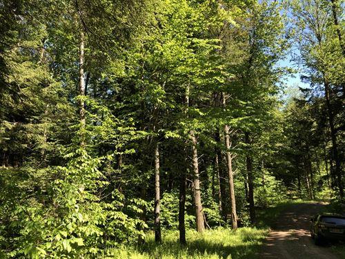 Deerland Park : Camden : Oneida County : New York