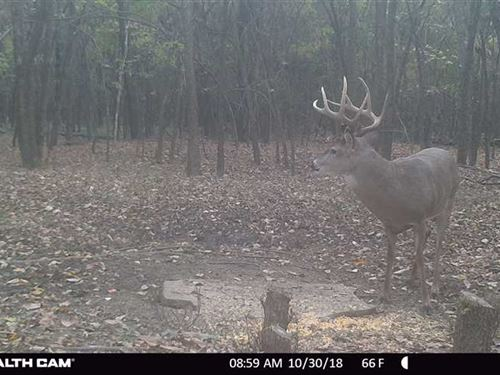 26 Acre Trophy Hunting Honey Hole : Coffeyville : Montgomery County : Kansas