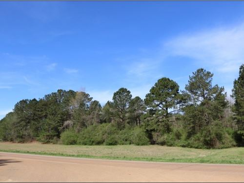 26.5 Acres In Neshoba County In Phi : Philadelphia : Neshoba County : Mississippi