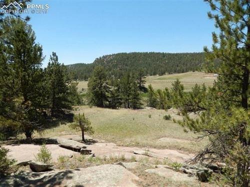 35 Acres Central Colorado Mountains : Florissant : Teller County : Colorado