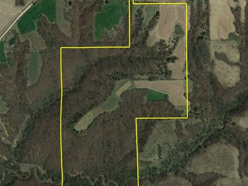 Monroe County Hunting : Lovilia : Monroe County : Iowa