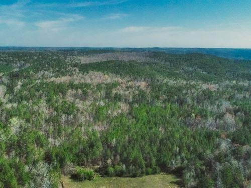 Pekin Road Investment : Candor : Montgomery County : North Carolina