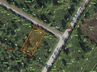 Beautiful Lot, Indian Lake Estate : Lake Wales : Polk County : Florida