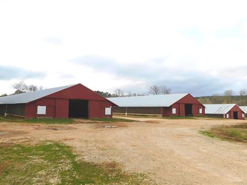 Broiler Farm & 46 Acres : Ashland : Clay County : Alabama