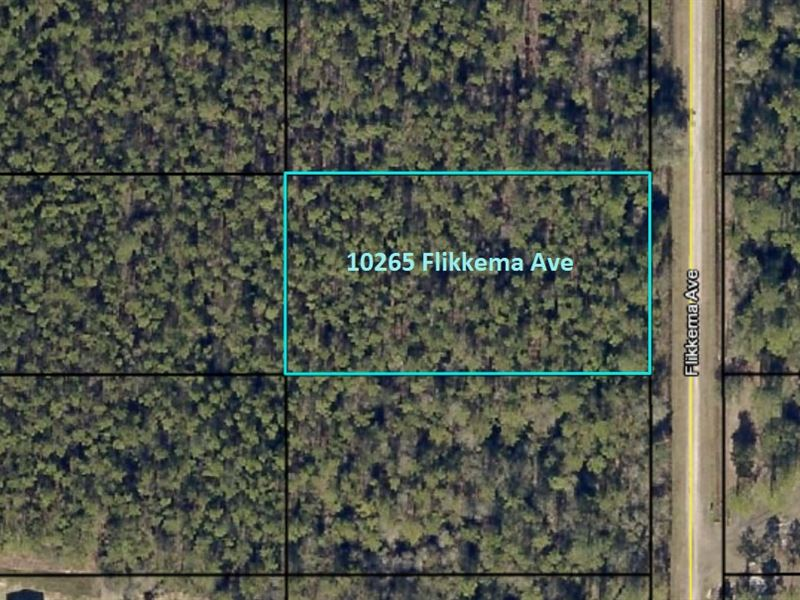 Lot For Home, St, Johns, Fl : Hastings : Saint Johns County : Florida