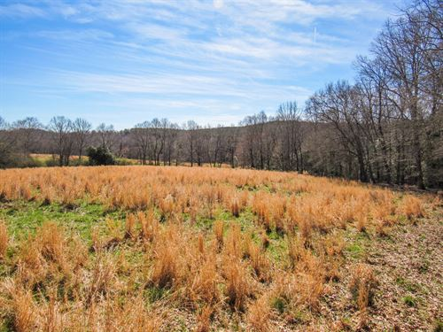 12.39 Acre Mini Farm : Woodruff : Spartanburg County : South Carolina