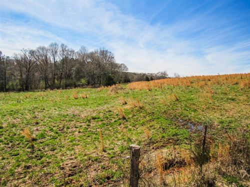 18.18 Acre Mini Farm : Woodruff : Spartanburg County : South Carolina