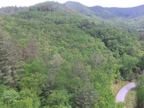 Mountaintop Estate : Dillard : Rabun County : Georgia