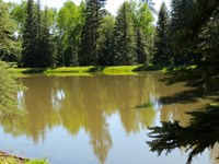 Aspen Meadows & Ponds Ranch : Dolores : Montezuma County : Colorado