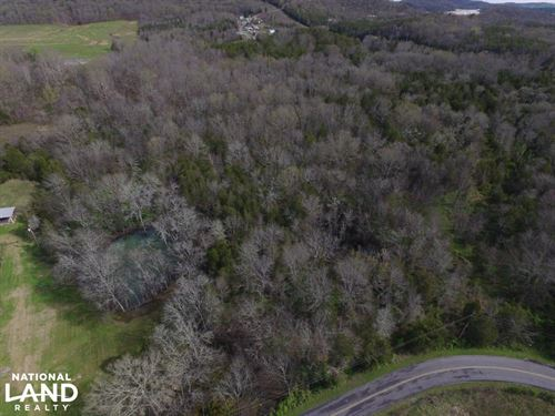 44 Acres Rocky Valley Rd : New Market : Jefferson County : Tennessee