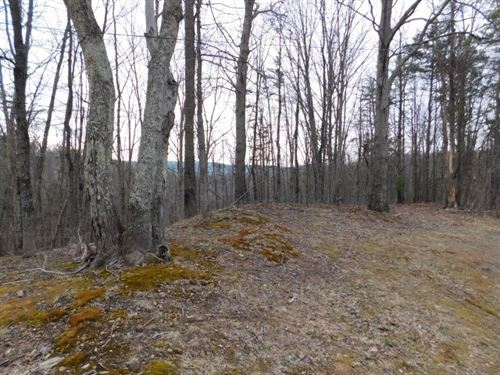 WV Land, Delray, Wv, Hampshire : Delray : Hampshire County : West Virginia