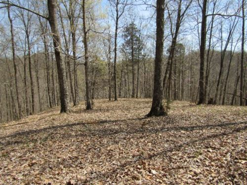24.82Ac, No Restric, Totally Wooded : Hilham : Clay County : Tennessee