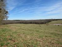 55.27 Acre River Front Mini Farm : Woodruff : Spartanburg County : South Carolina