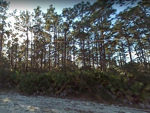 Polk County, Fl $32,000-Neg : Indian Lake Estates : Polk County : Florida