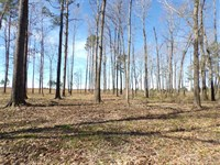Mountain Fork River Development : Broken Bow : McCurtain County : Oklahoma