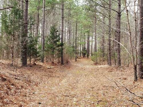 228Ac Squeeze Bottom Hill Tract HI : Buffalo : Humphreys County : Tennessee