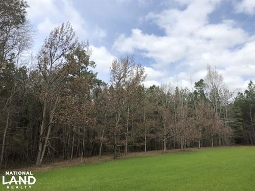 Eclectic 97 Acre Homesite : Eclectic : Elmore County : Alabama