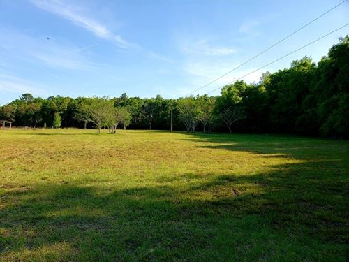 Land Levy County Florida 4.32 Acres : Chiefland : Levy County : Florida