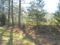 Land 3.75 Acres Lawrence County : Sontag : Lawrence County : Mississippi