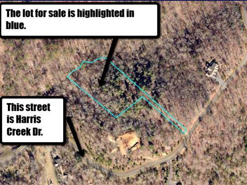 Great Deal In Harris Creek : Ellijay : Gilmer County : Georgia