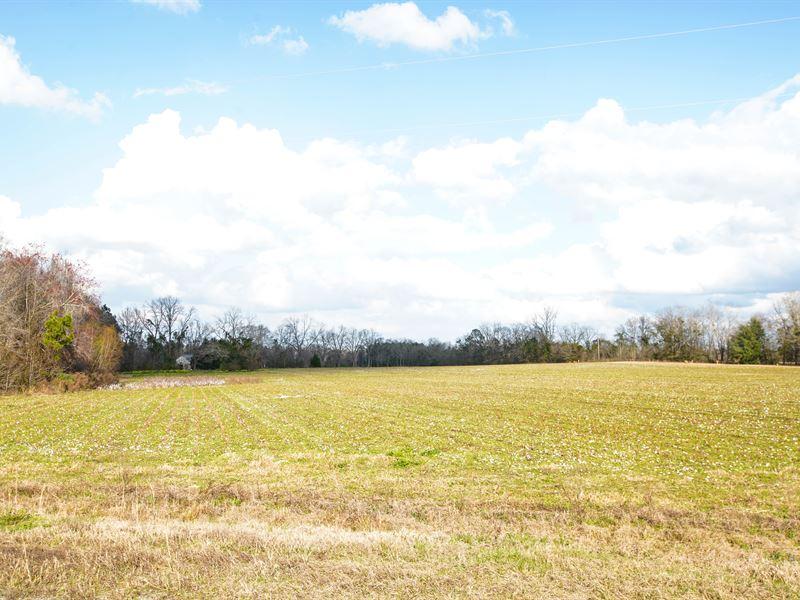 Westside Farm Tract 4 : Statesboro : Bulloch County : Georgia