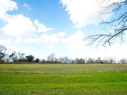 Westside Farm Tract 5 : Statesboro : Bulloch County : Georgia