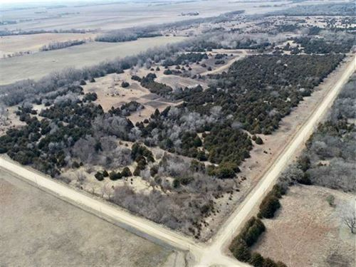 80 Acres of Excellent Hunting : Burrton : Harvey County : Kansas