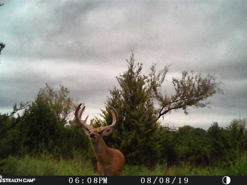 177 Acre Waterfowl, Deer, Cattle : Picher : Ottawa County : Oklahoma