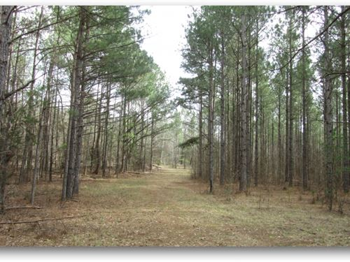 120 Acres In Choctaw County In Acke : Ackerman : Choctaw County : Mississippi