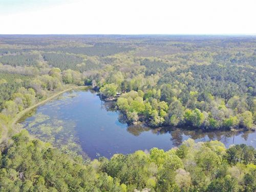 228 Acres, 2 Lodges & Lake : Woodville : Wilkinson County : Mississippi
