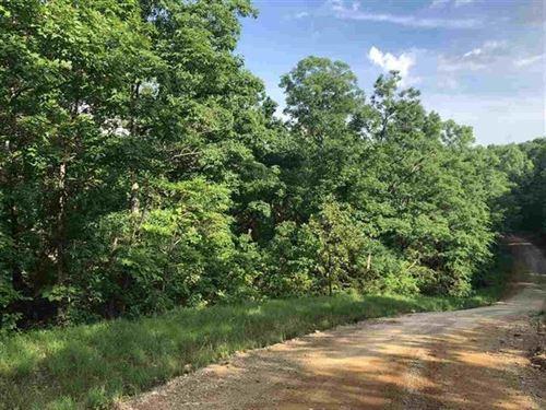 6 Plus Acres Wappapello Lake : Wappapello : Wayne County : Missouri