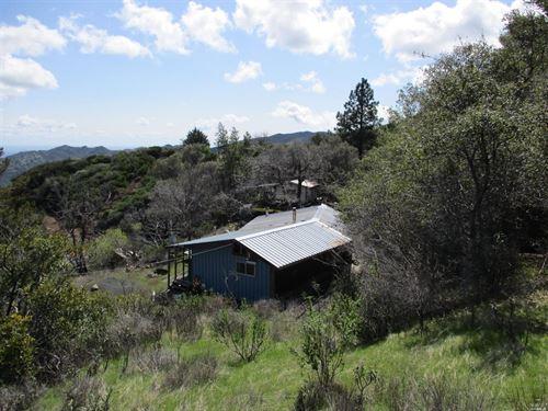 Northern California Hunting : Vacaville : Solano County : California