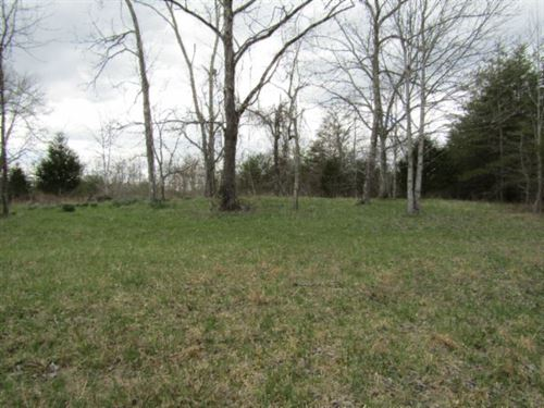 58.53 Ac At The End Of Rd, Off Grid : Deer Lodge : Morgan County : Tennessee