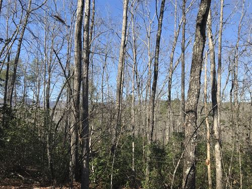 Castle Creek : Pickens : Georgia