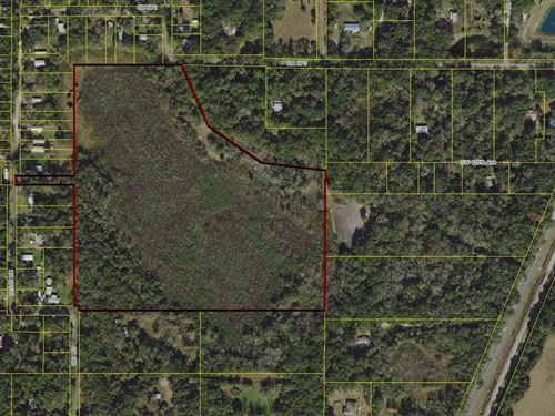 32+ Acres, Owner Financing : Webster : Sumter County : Florida
