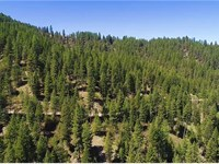 216K Mountain Lot Selling $119K : Boise : Boise County : Idaho