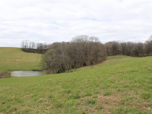 67 Acres Santa Fe Tn Farm : Santa Fe : Maury County : Tennessee