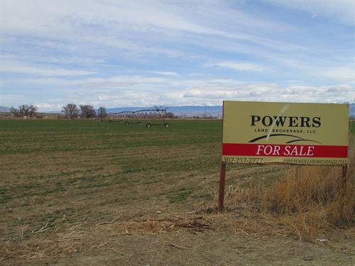 Byron Pivot Irrigated Farm : Byron : Big Horn County : Wyoming