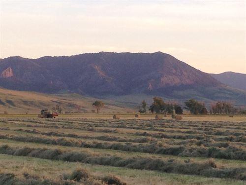 Armstrong Road : Cascade : Montana