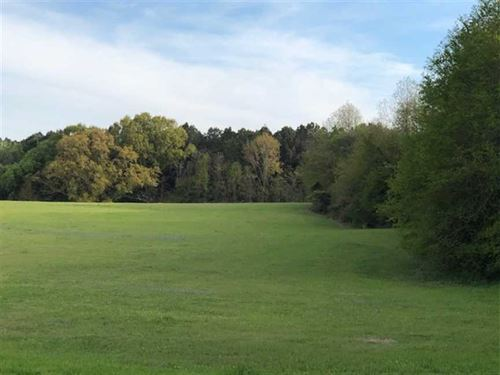 91 Acres, Beautiful Rolling op : Benton : Yazoo County : Mississippi