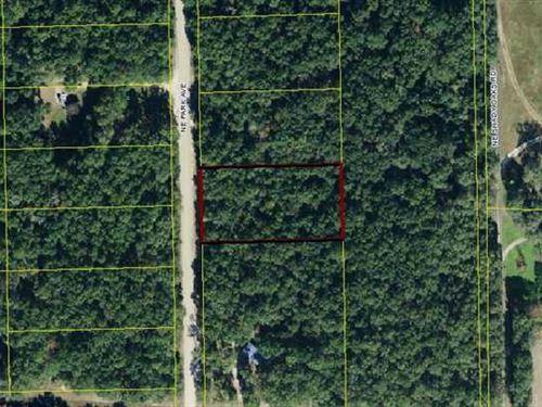 1.05 Acres in Mayo, FL : Mayo : Lafayette County : Florida