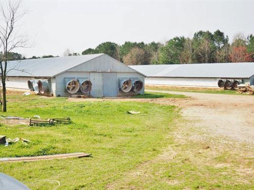 2 House Breeder Poultry Farm, Mobil : Philadelphia : Winston County : Mississippi