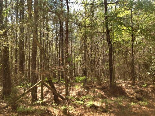 4-013 Dennis 20 : Deatsville : Autauga County : Alabama